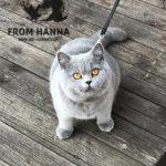 eika_from_hanna_happy