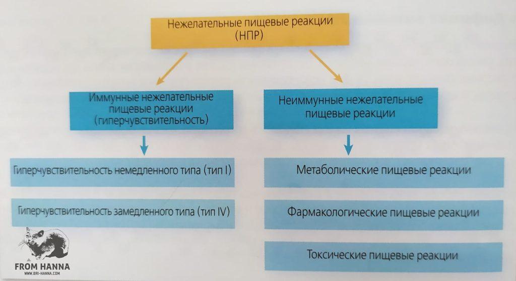 patogenez-nezhelatelnykh-pishevykh-reaksii