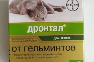 Дронтал (drontal cat bayer) инструкция по применению для кошек