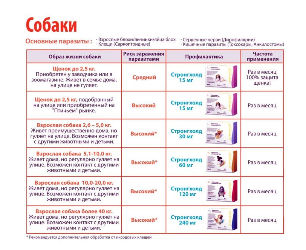 strongkhold-dlja-koshek-instruksija-sena-po-primeneniyu-otzyvy-kupit-sobak
