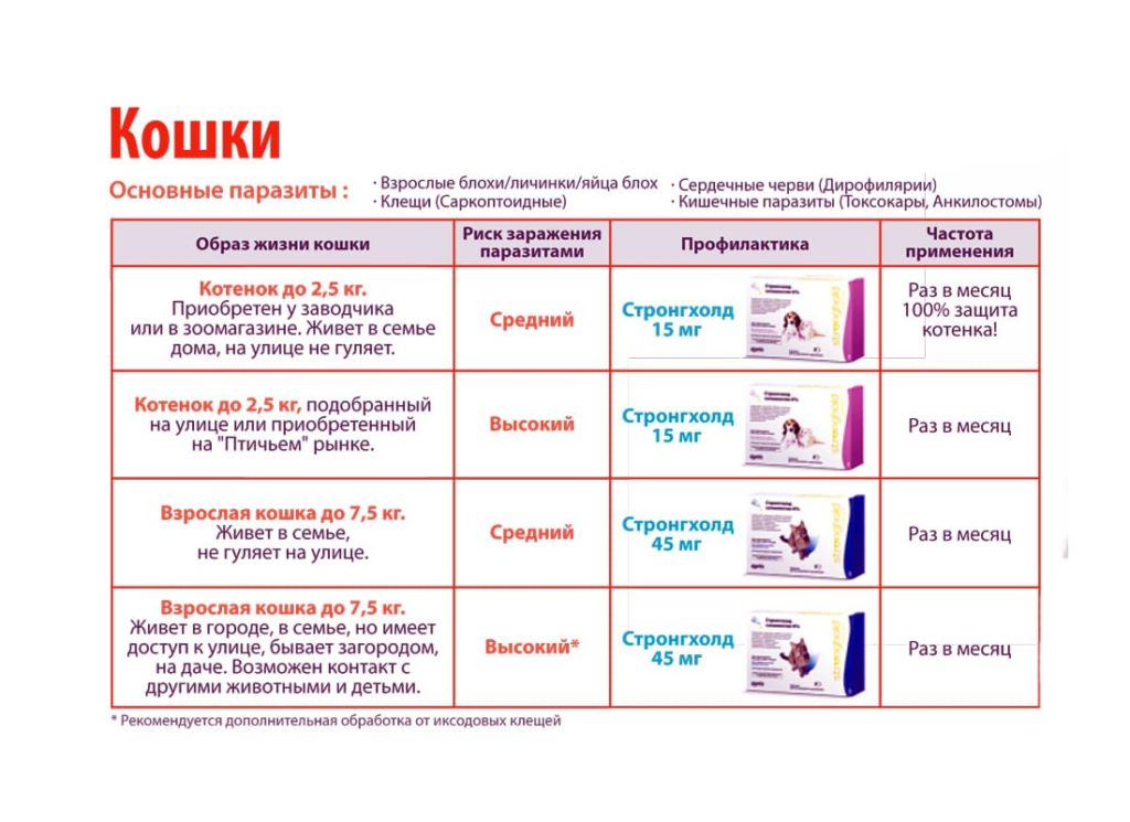 strongkhold-dlja-sobak-instruksija-po-primeneniyu-kapli