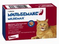 Таблетки для котят, кошек мильбемакс — инструкция по применению