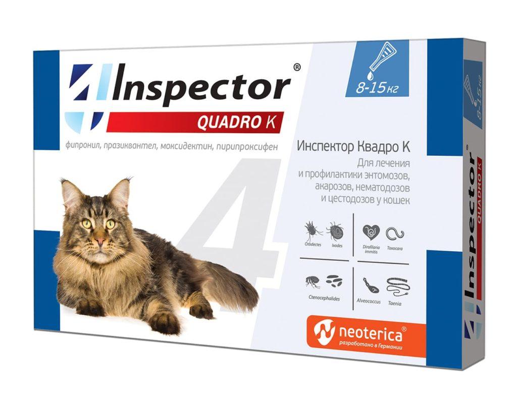 inspector-quadro-k-ot-blokh-kleshei-glistov-8-15