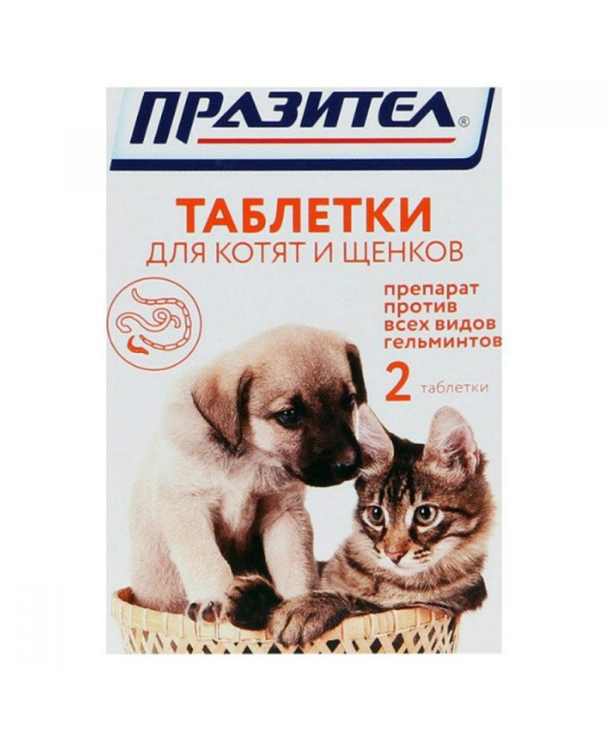 prazitel-dlja-koshek-sena-tabletki-kotjat-sobak-instruksija