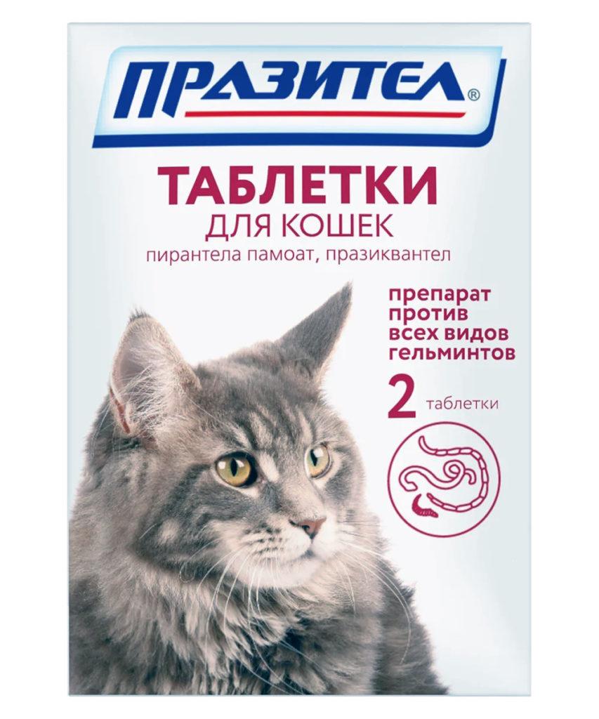 prazitel-suspenzija-dlja-koshek-instruksija-otzyvy-dozirovka-i-kotjat-po-primeneniyu-tabletki