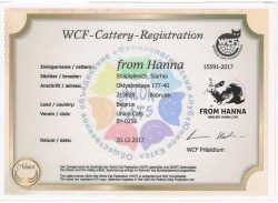 WCF-Cattery-Registration-From-Hanna