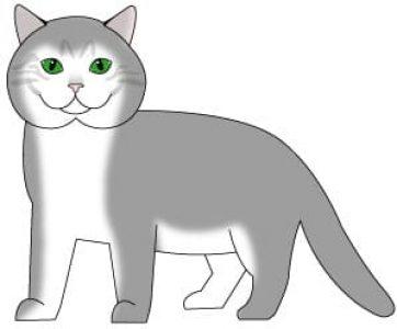 cats-tabby-ticked